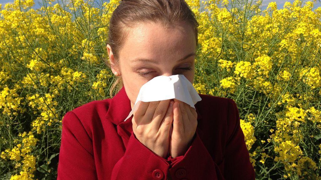 ¿Cuales son las alergias más comunes?