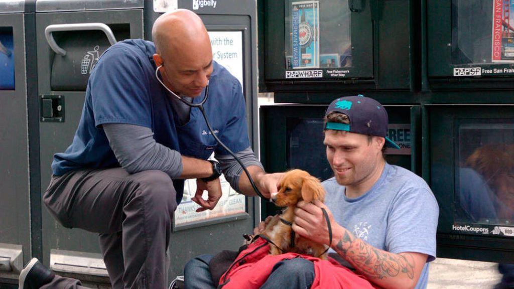 Un solidario veterinario trata a mascotas de personas sin hogar