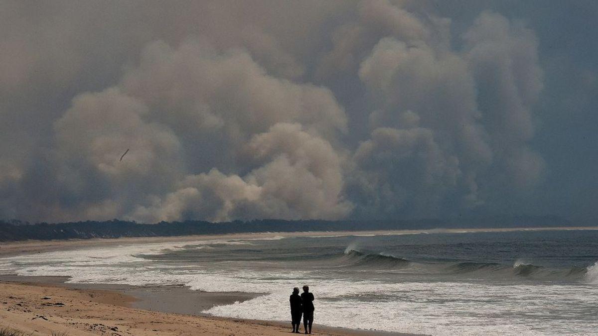 El dióxido de carbono alcanzará niveles vistos por última vez durante la época del Plioceno