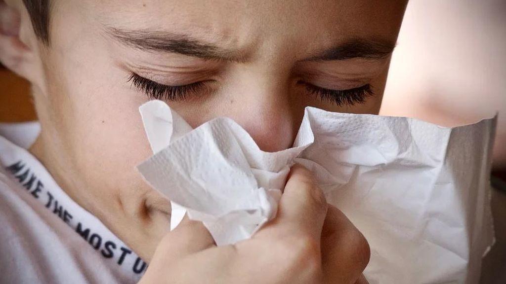 Los científicos explican si el calor beneficia a los virus