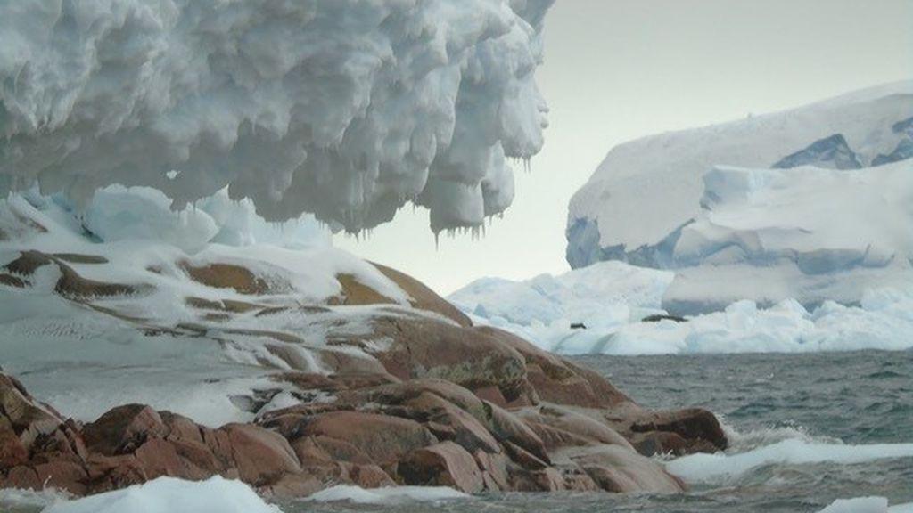 Una isla que no está en los mapas antárticos ha aparecido frente al glaciar de Pine Island