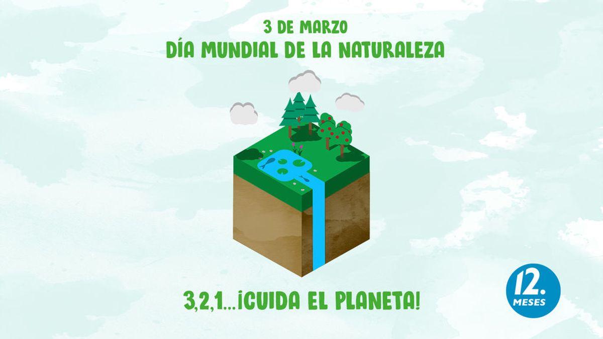Día mundial de la naturaleza