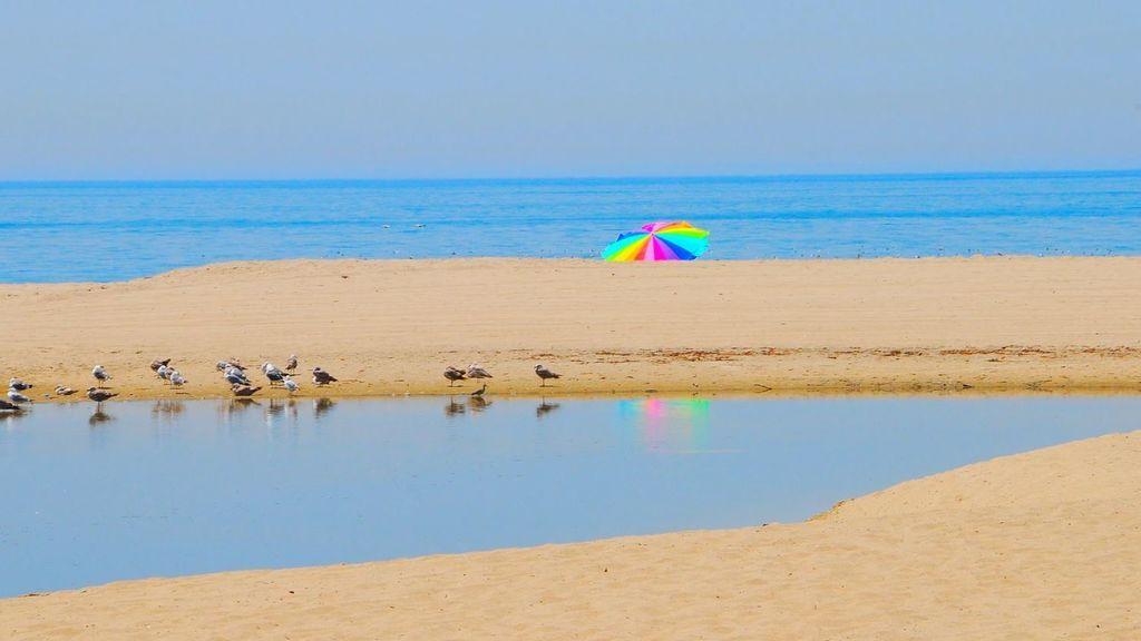 La mitad de las playas del mundo podrá desparecer en 80 años