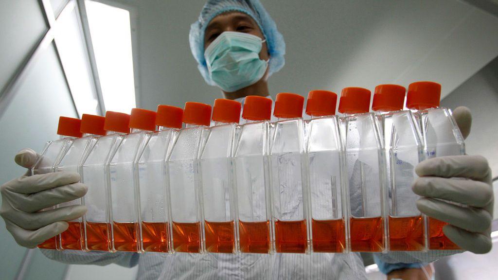 El cambio climático no tiene relación con este coronavirus, pero sí traerá nuevos virus y más virulentos