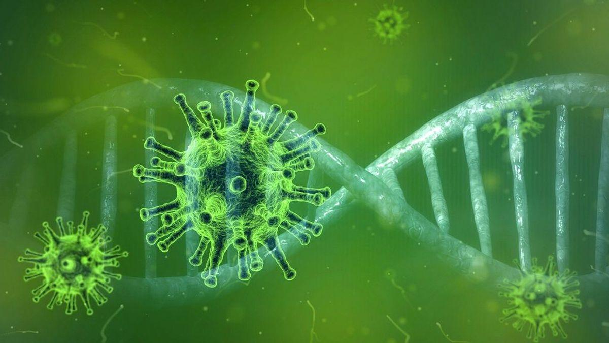 Científicos chinos descubren cómo el coronavirus entra en las células del cuerpo humano