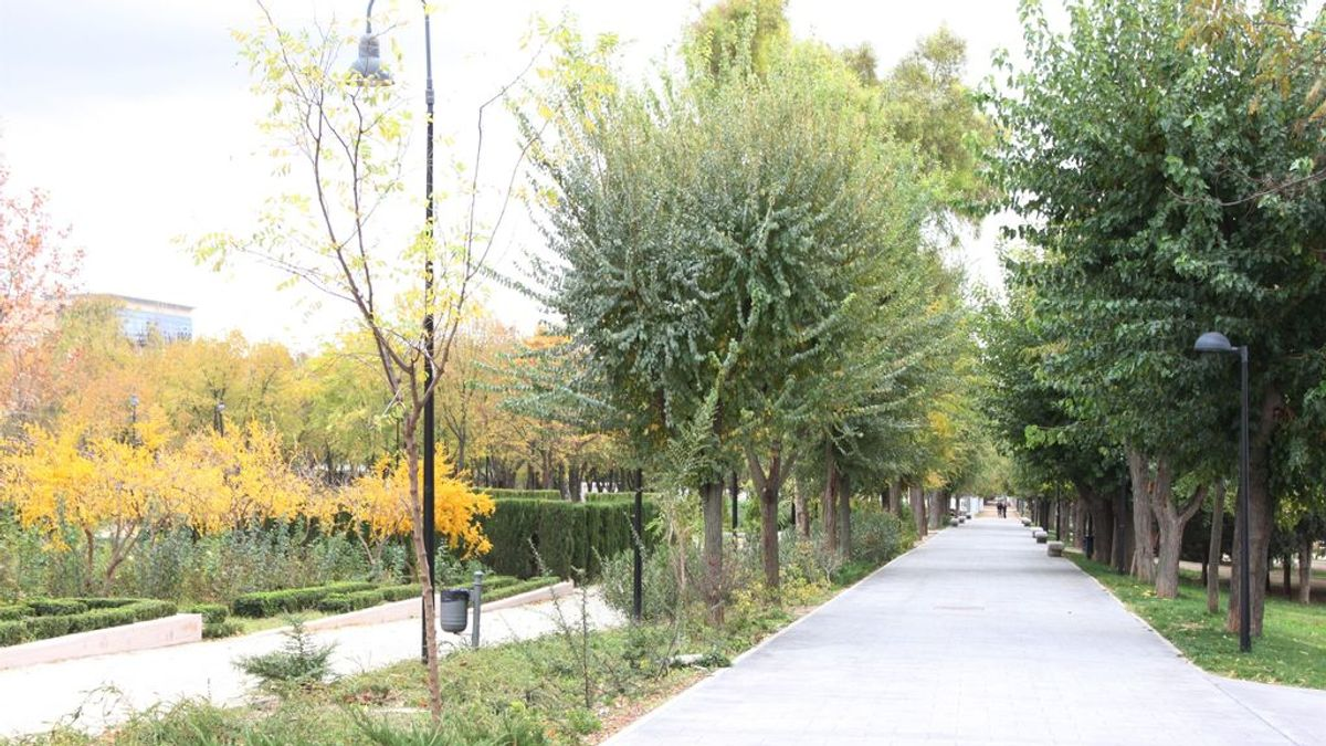 Detenida en Guadalajara por simular una falsa violación grupal en un parque de Toledo