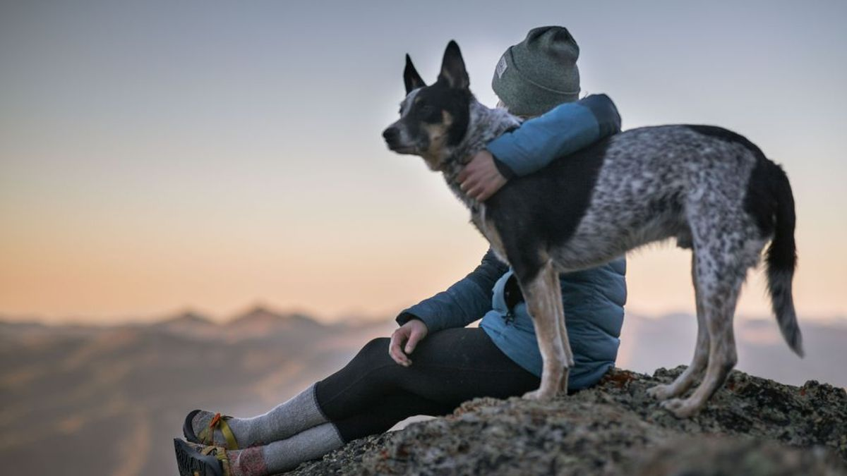 Casarte con tu perro puede estar bien, pero mejor dale todo tu amor