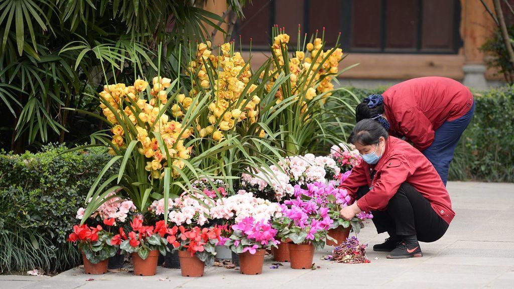 Lo que está por venir: el testimonio de una española en China tras  dos meses de cuarentena