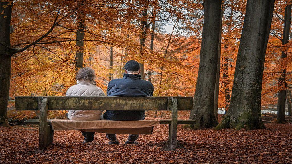 Cómo saber si me compensa pagarme la Seguridad Social para la jubilación