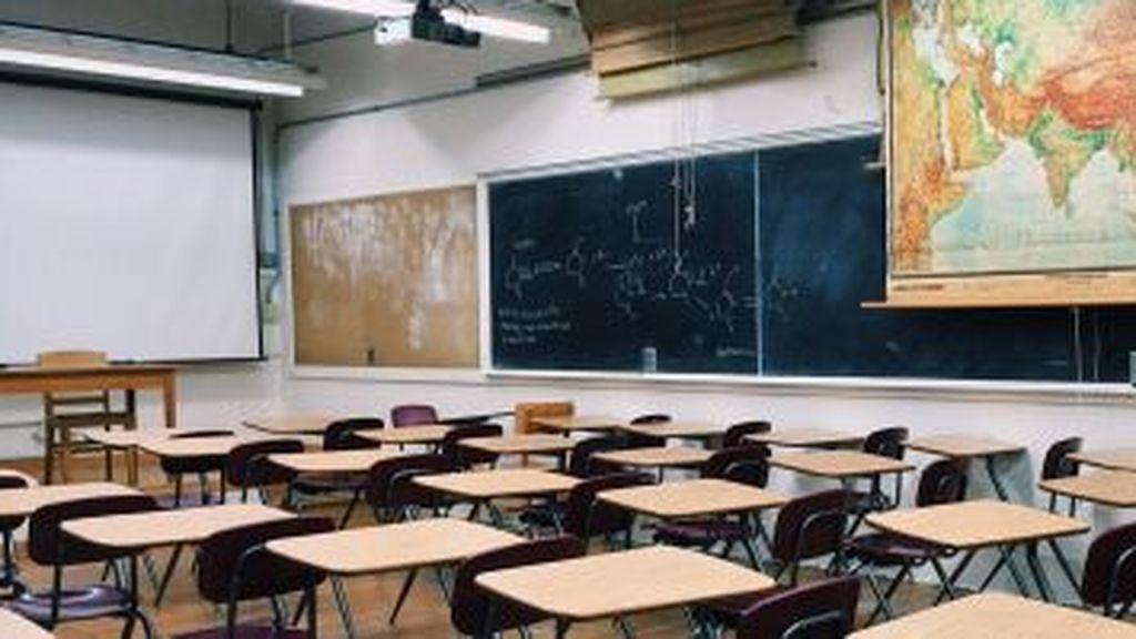 """La  ANPE se opone a que se alargue el curso escolar hasta el mes de julio: """"Las clases no se han suspendido"""""""