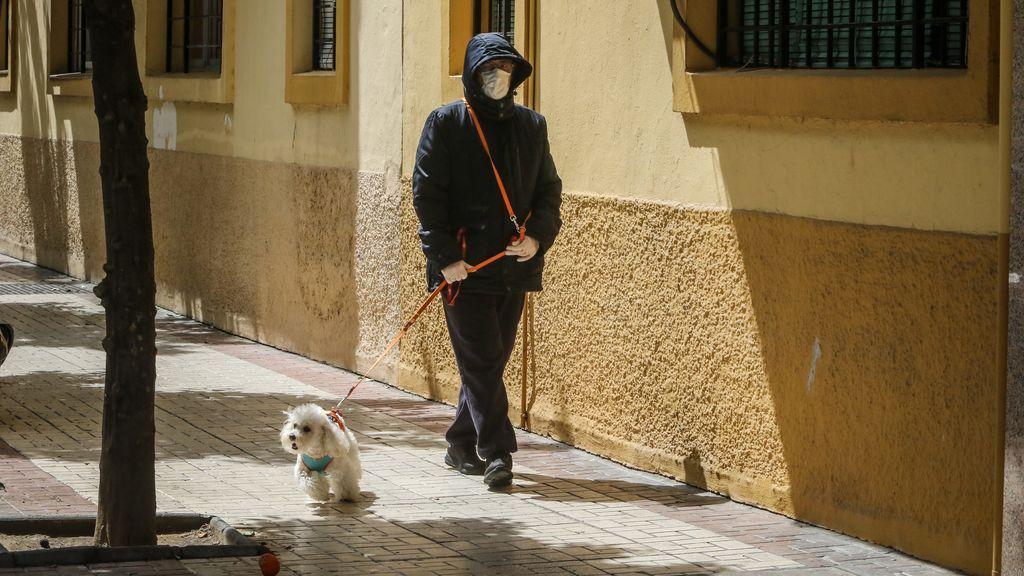 Un hombre es denunciado por alquilar sus perros para pasear en A Coruña