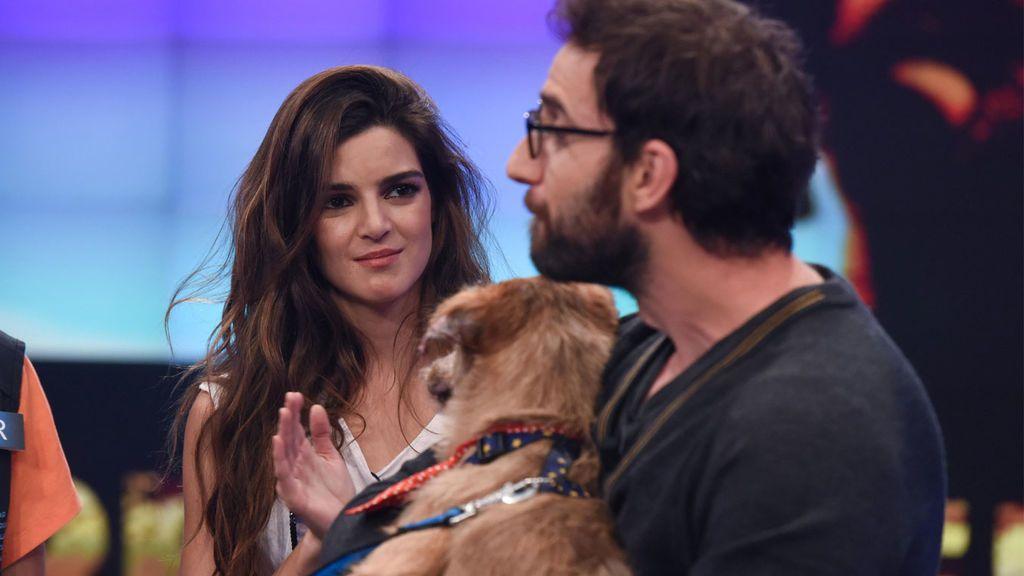 Dani Rovira y Clara Lago buscan hogar para un perro abandonado