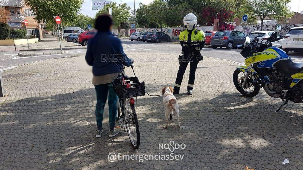 La pillan en bici, con su perro cojo atado al manillar, a un kilómetro de su casa en Sevilla