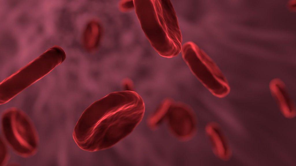 Conoce las enfermedades de la sangre: el enemigo silencioso