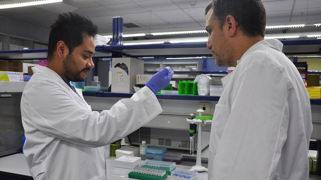 Valencia impulsa una herramienta con inteligencia artificial que detecta neumonía