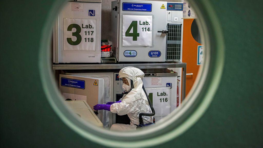 Investigan una vacuna centenaria contra la tuberculosis que podría ser útil frente al coronavirus