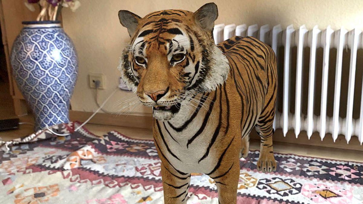 Pon un tigre en tu casa, el juego 'para niños' que triunfa entre los mayores