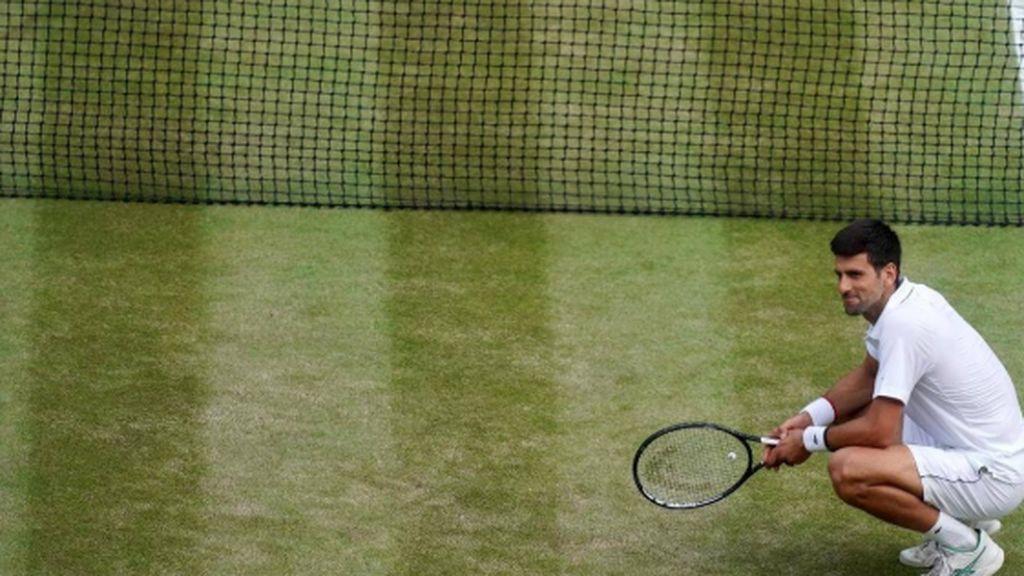 Wimbledon cancelado por el coronavirus