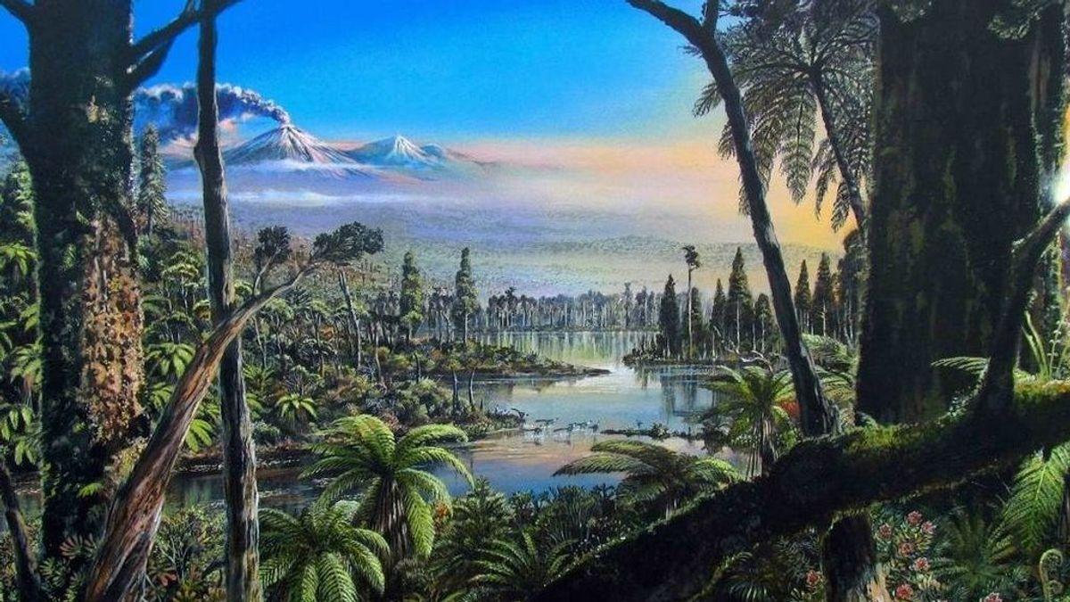 Aparecen rastros fósiles de una selva en el fondo marino antártico