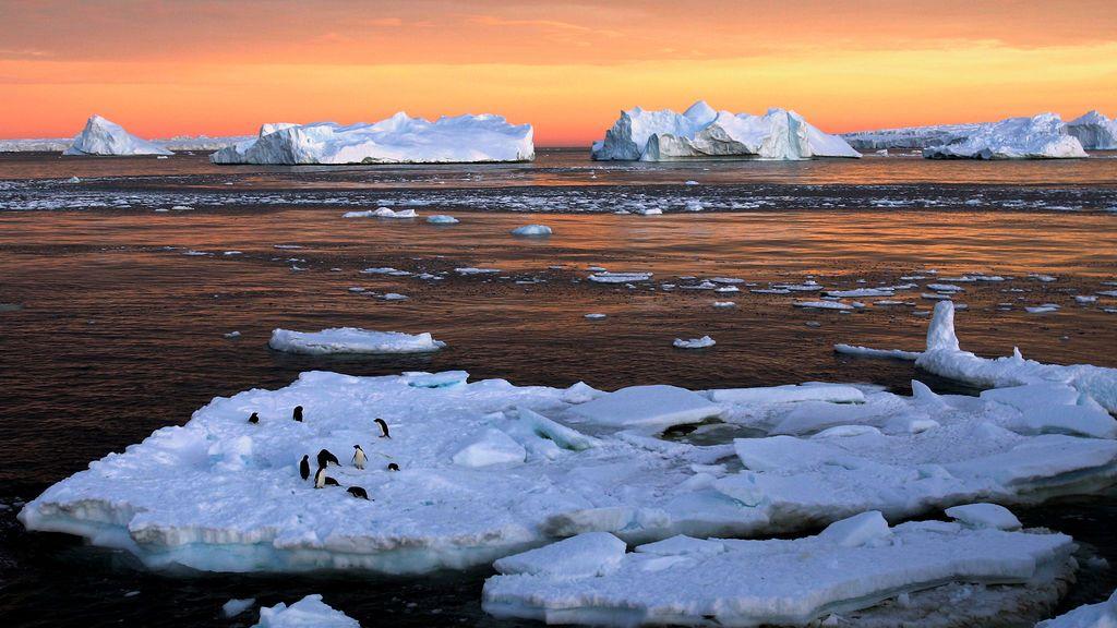 Primera ola de calor en la Antártida