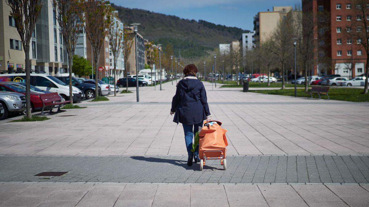 EuropaPress_2742548_mujer_transita_ciudad_despues_realizar_compra_alimentos_periodo