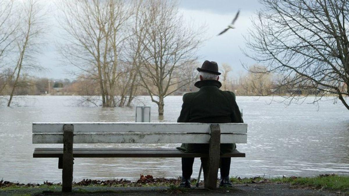 Los introvertidos y los solitarios salvarán la especie, según la ciencia