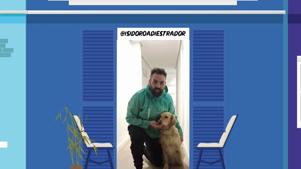 @ISIDOROADIESTRADOR nos da las claves para entrenar a nuestros caninos
