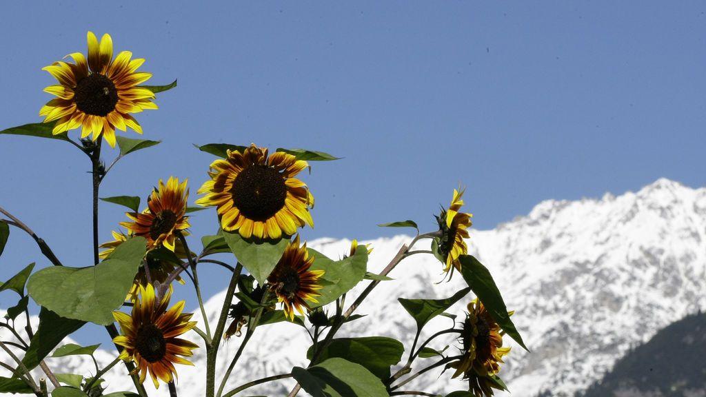 Otoño y primavera en España: dos estaciones cada vez menos palpables