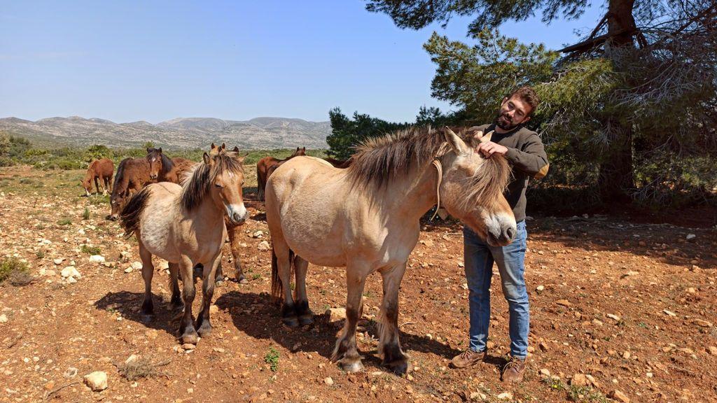 Confinado con su ganado en los montes de Tous