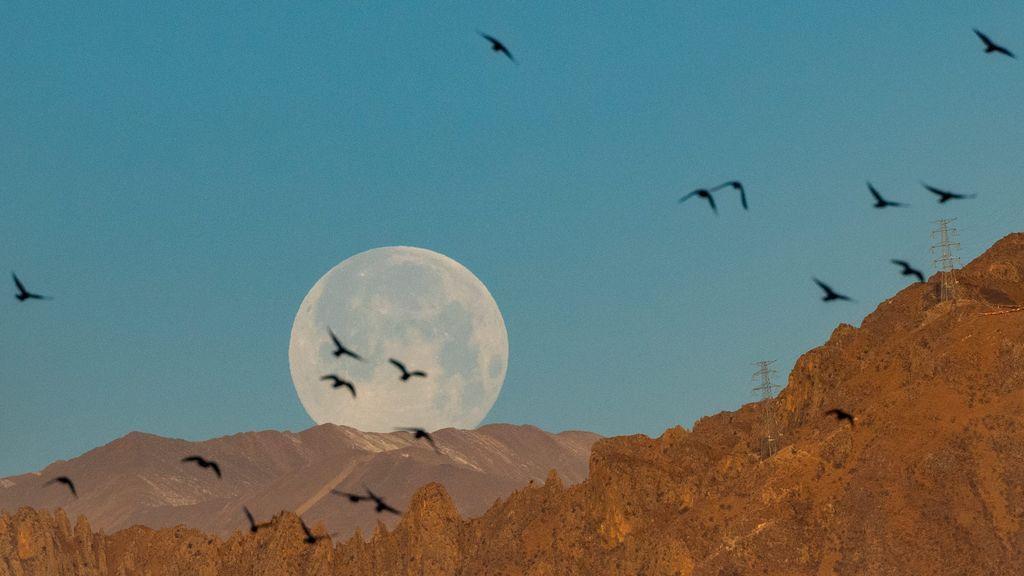 Enorme y brillante: la superluna se vio espectacular desde todos los puntos de España