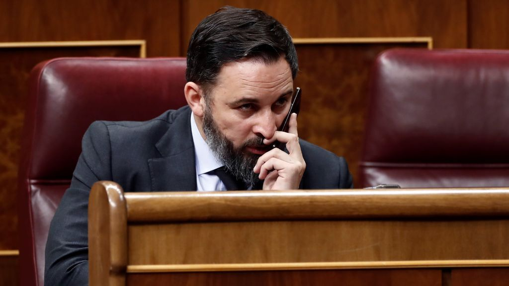 Abascal pide la dimisión del Gobierno  y no apoya la prórroga del estado de alarma