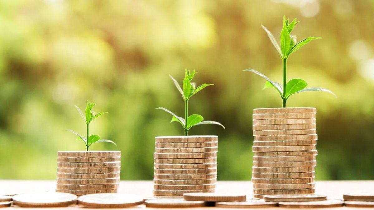 Economía verde: el futuro del planeta