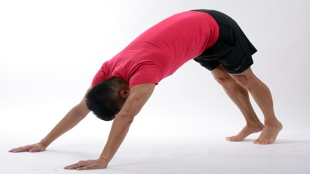 yoga-perro