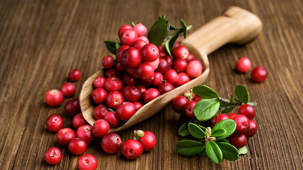 Los arándanos rojos serán muy recomendables como tratamiento contra la infección de orina.