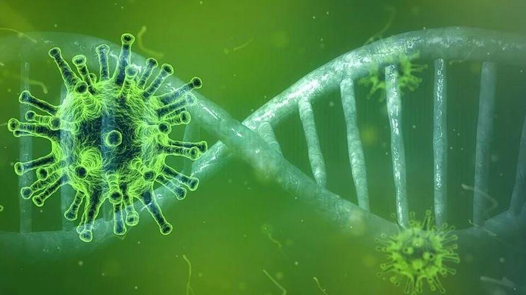 Los genes podrían ser la clave de los misterios del coronavirus: por qué unas personas agravan y otras no