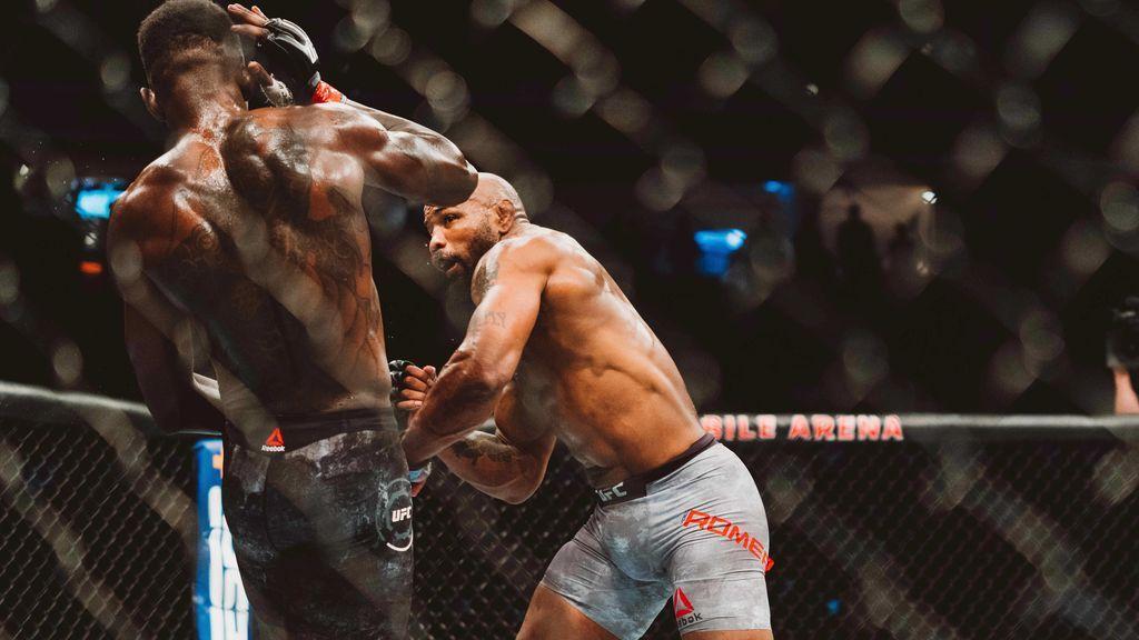 Principales diferencias entre UFC y MMA