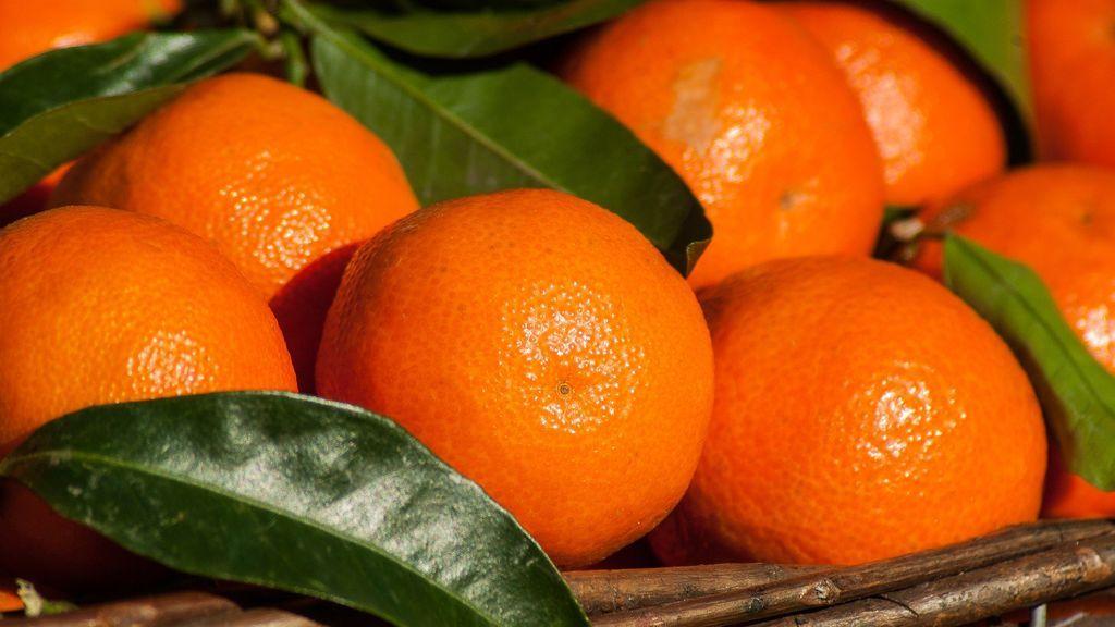 Naranjas y mandarinas, las reinas de la cesta de la compra