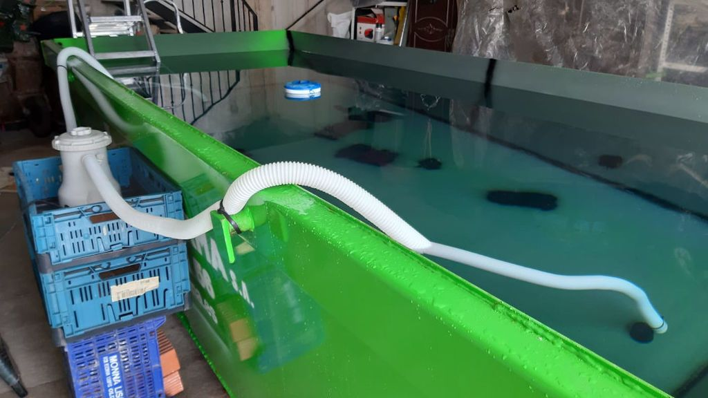 Triatleta piscina