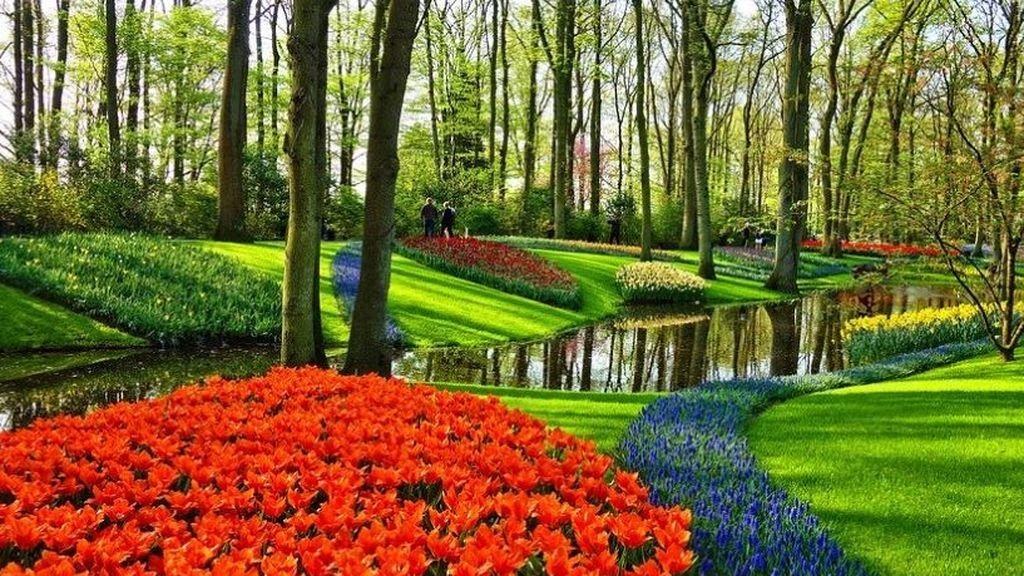 De los tulipanes de Holanda a los cerezos de Japón: viaje desde el sofá por los mejores jardines del mundo