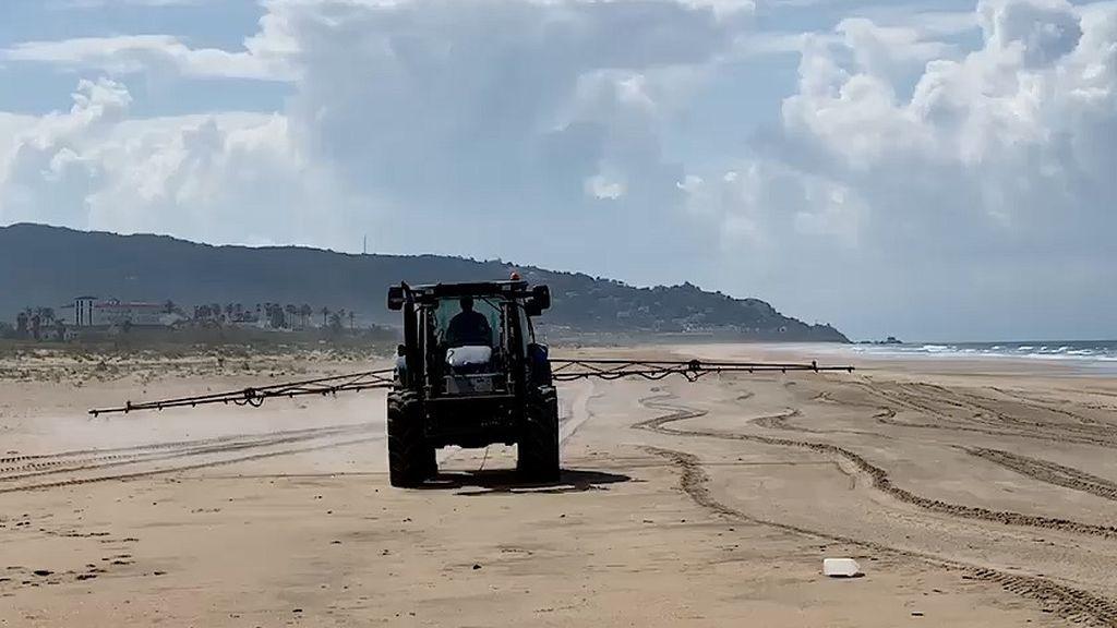 La Junta  investiga el desinfectado con lejía de la playa de Zahara de los Atunes