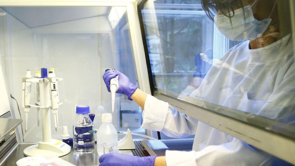 Esto es lo que los virólogos sabemos hasta hoy sobre el coronavirus SARS-CoV-2