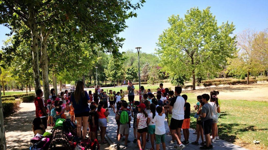 Campamentos de verano, en el aire: ¿podrán realizarse? ¿cómo serán?