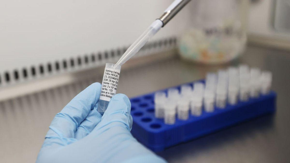 Se trabaja en 120 vacunas para detener la pandemia de coronavirus