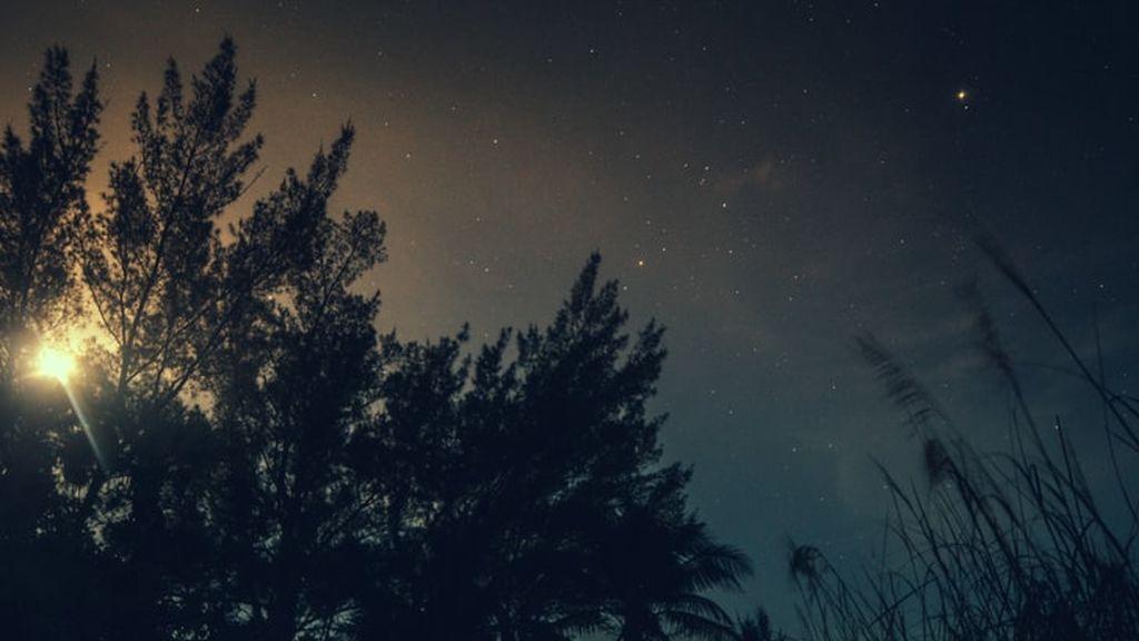 El pitido que se escucha por la noche tiene una explicación