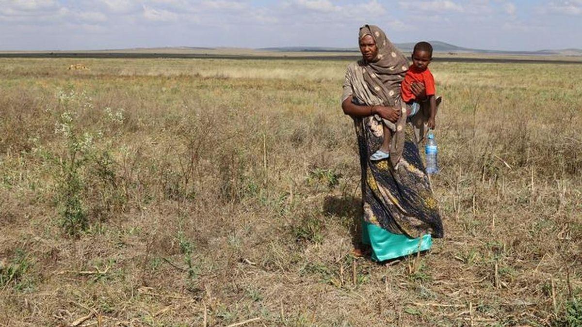 Miles de millones de personas sufrirán un calor imposible en 2070