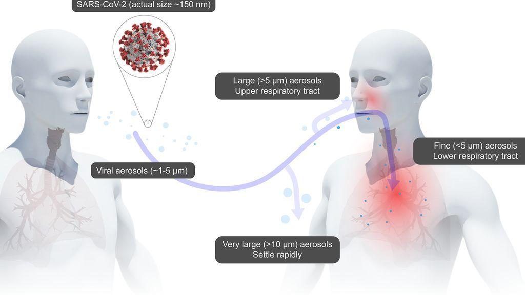 Calentar las mascarillas N95 puede ser el método más eficaz para desinfectarlas