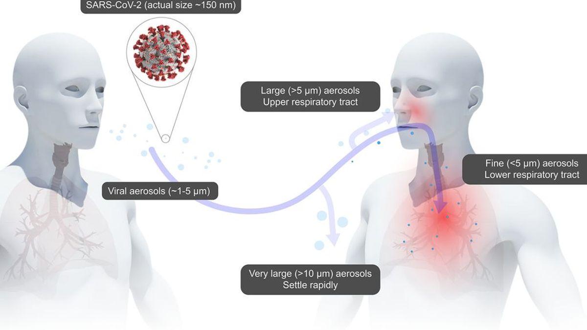 Calentar las mascarillas N95 puede ser el método más eficaz para desinfectarlas,