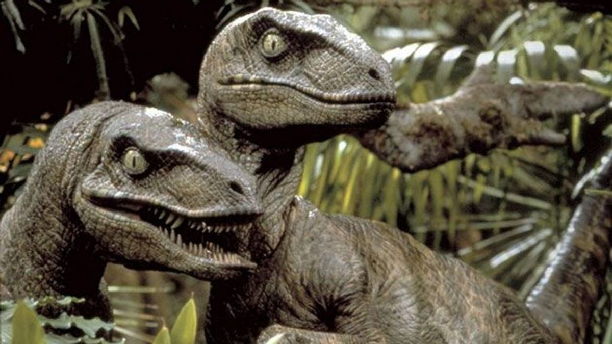 El error de 'Parque Jurásico': el velociraptor cazaba en solitario y no en manada