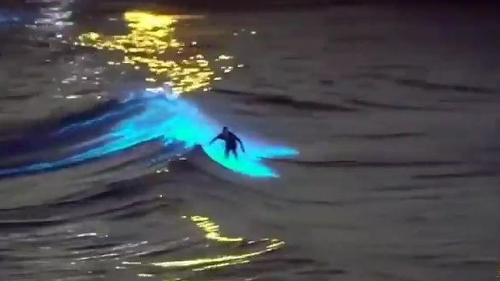 Surf sobre olas bioluminiscentes: el motivo por el que brillan tanto