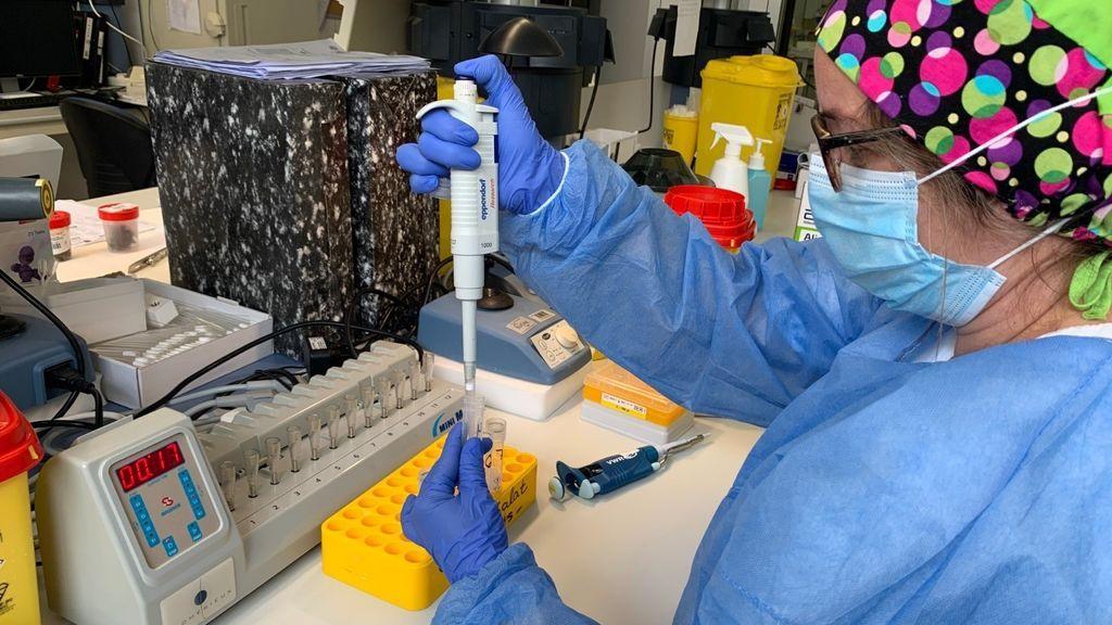 España supera las 1,6 millones pruebas diagnósticas PCR realizadas